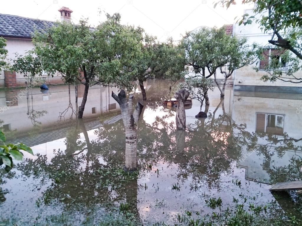 house with flooded orchard in backyard after floods u2013 stock