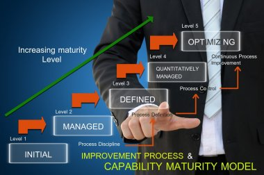 Improvement process of capability maturity model for business concept