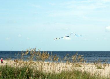 Kite Flying at Oak Island, NC