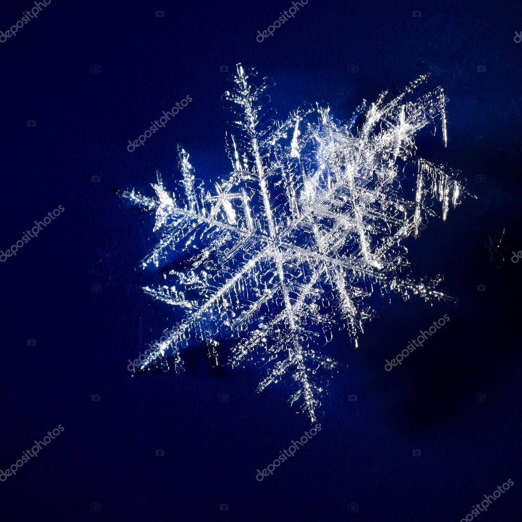 Snowflakes on dark blue background