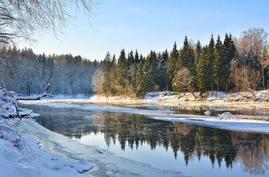 Gauja river valley winter landscape. Sigulda, Latvia