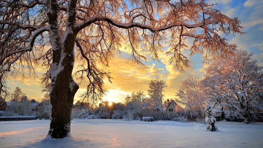Coperta di neve campagna invernale al tramonto in lettonia for Piani di coperta 16x20