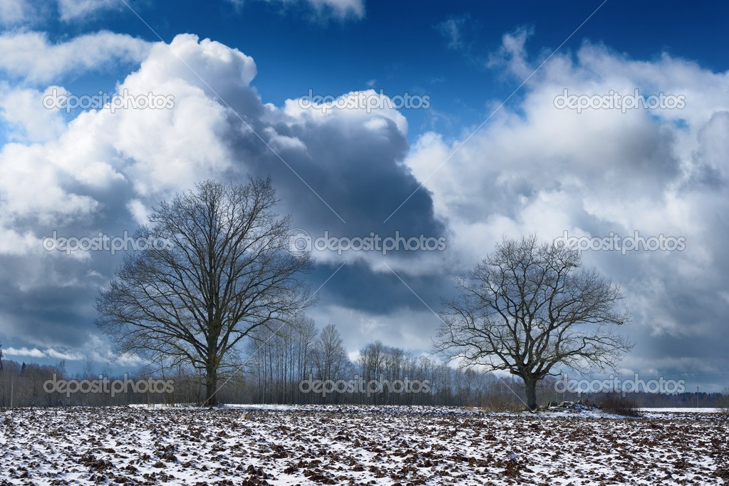 Heavy snow storm clouds over fields