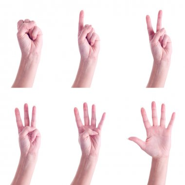 Hand gestures, counting to 5, over white background. stock vector