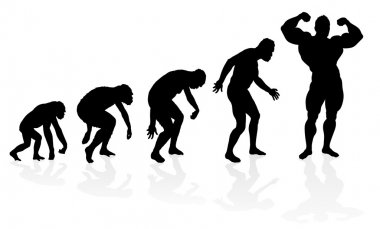 Evolution of the Bodybuilder.