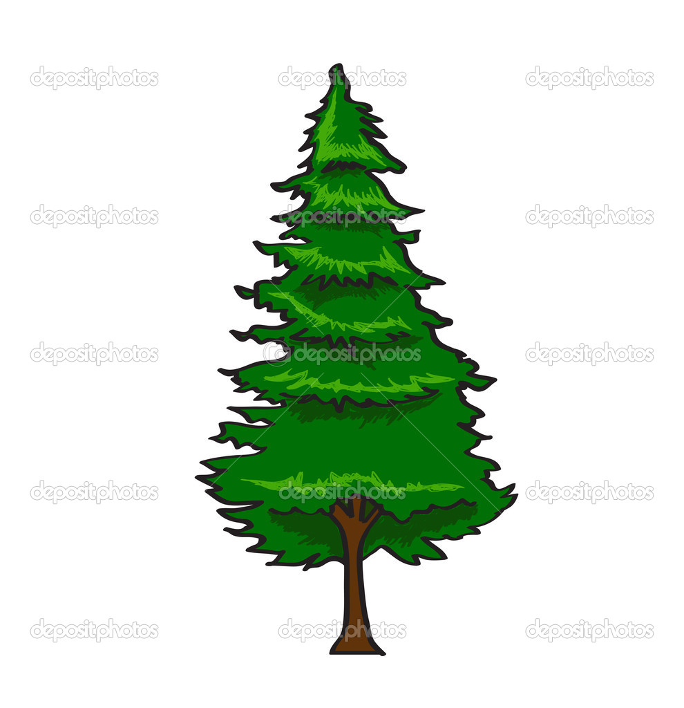 Pine Tree In Cartoon Style Isolated On White Background Stock Vector