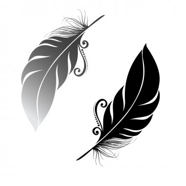 Peerless Decorative Feather
