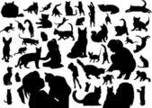 Sagome gatti