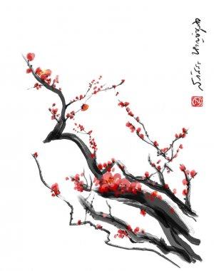 Sakura, cherry blossom plum chinese brush paintingRed cherry blossom chinese brush painting