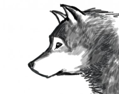 snow wolf drawing