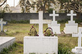 Fotografie Friedhof am Morgen