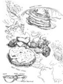Fotografie Pancake and syrup and steak with vegetable drawing
