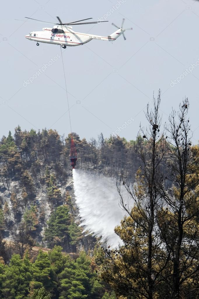Fire-fighting plane fights a forest fire on 24 August 2006 rippi