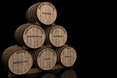 Wines of Andalusia