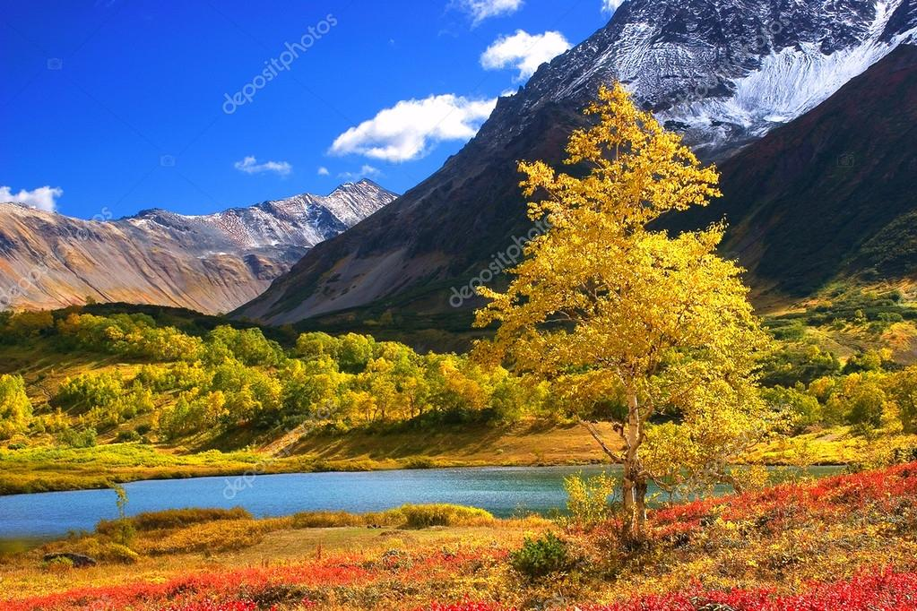 Beautiful landscape on Kamchatka mountains and forests