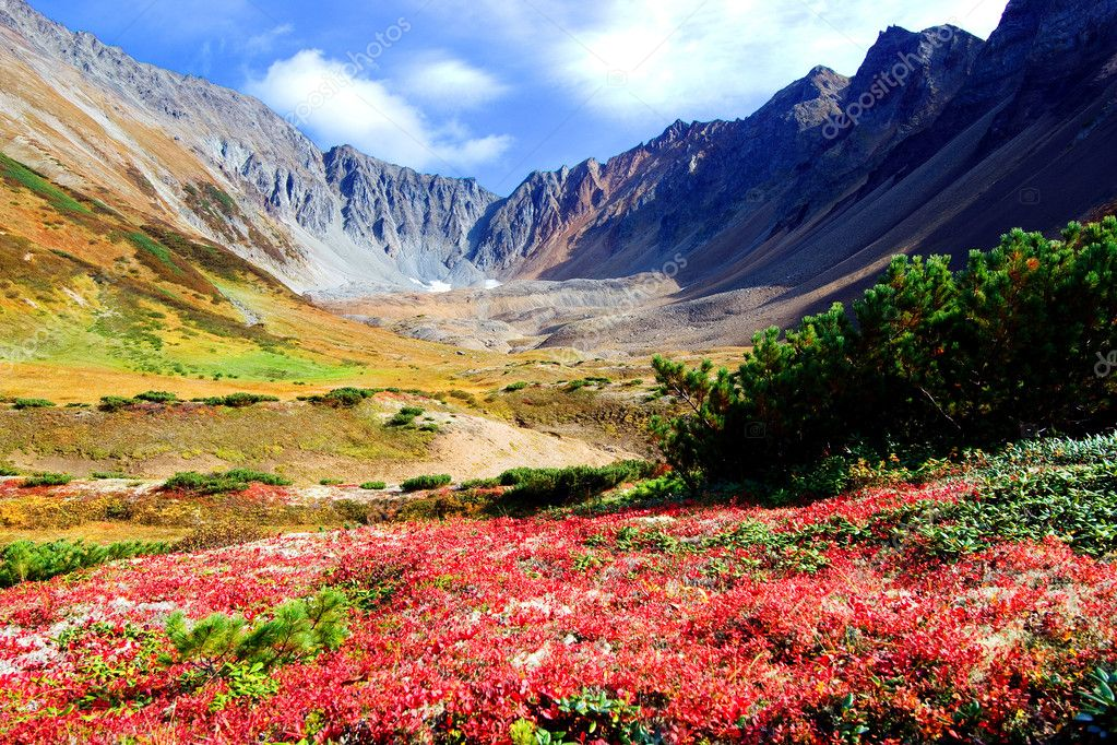Summer landscape of mountains and fields of Kamchatka