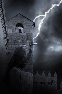 Halloween medieval raven