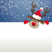 Reindeer looks over a advertising space