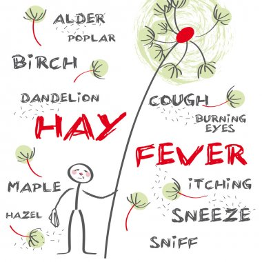 Hay fever english keywords