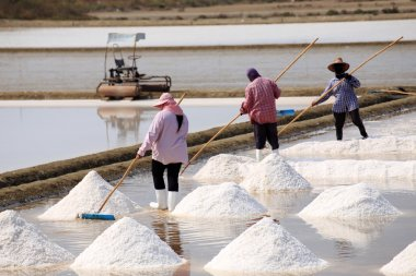 Workers in salt pans, Thailand.