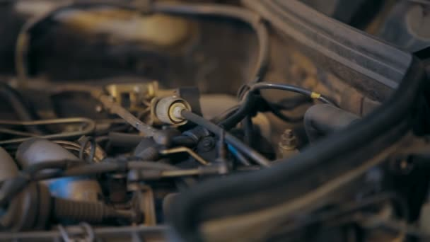 Motor Car engine. Close-up.