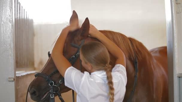 állati tréner és lovas