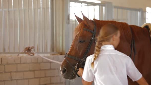 lány vezető ló