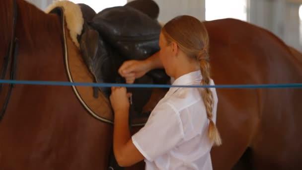 koňské sedlo