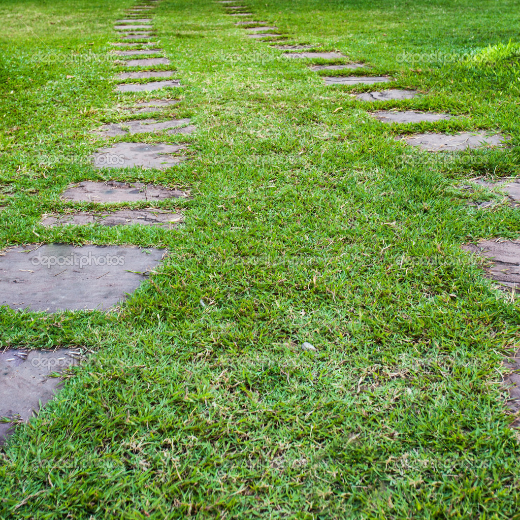 step stone pathway in a lush green park u2014 stock photo tortoon