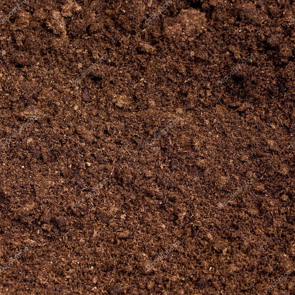 peat moss soil