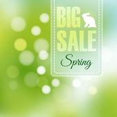 Fényképek tavaszi eladó poszter háttér és a bokeh világítás homályos, vektoros illusztráció