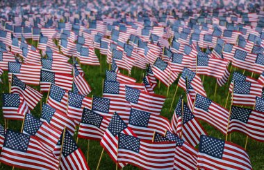 Many Small American Flags