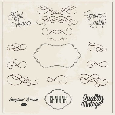 Frames and swirls for decoration hand drawn vector illustration