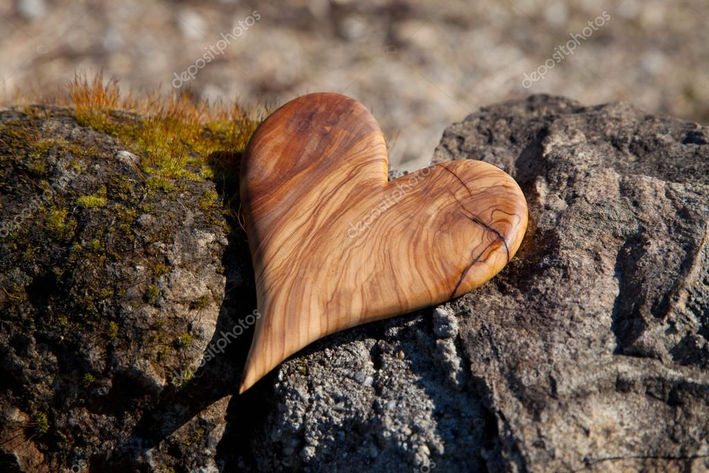 Wooden heart in nature