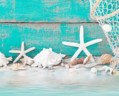 Starfish and seashells with fishing net