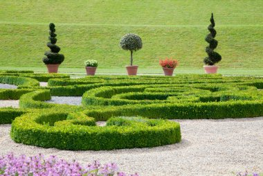Asian garden with flowers and boxwood.