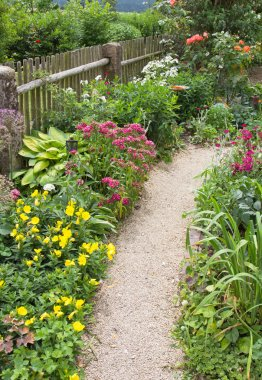 Flowers and path in the garden