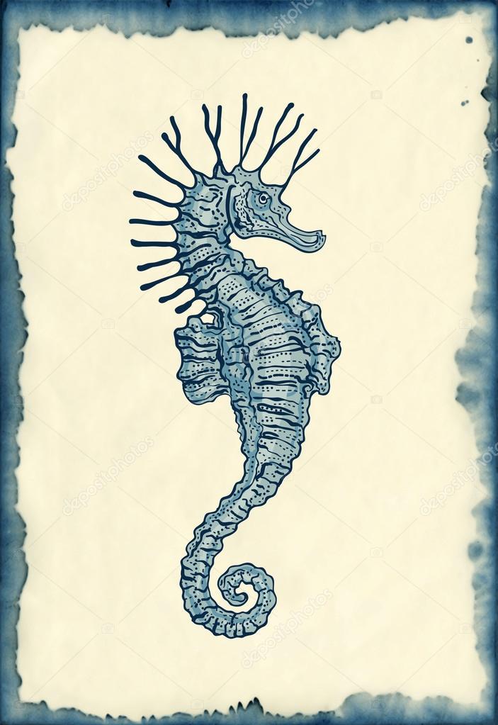 Hippocampe Dessin Sur Fond Buvardages Image Vectorielle