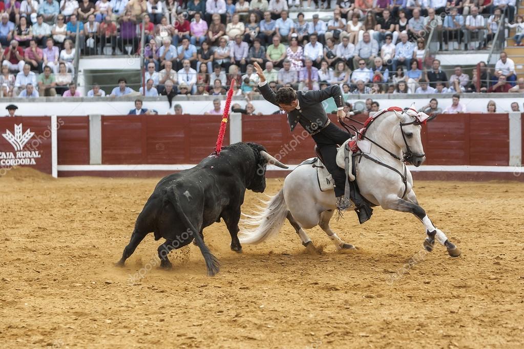 Stierkämpfer Zu Pferd