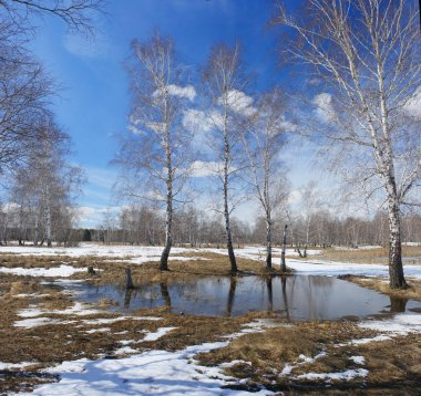 Early spring. Countryside in Central Russia