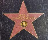Arnold schwarzenegger hvězda na chodníku slávy