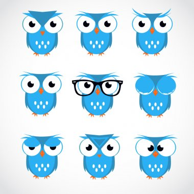 Cute Vector Collection of Bright Owls. Flat style