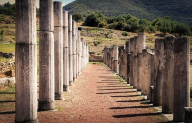 Ruins in ancient city of Messina, Peloponnes, Greece