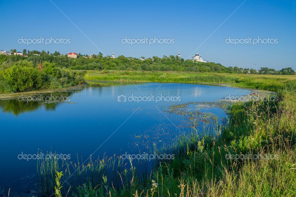 Russia. River bank Tesha