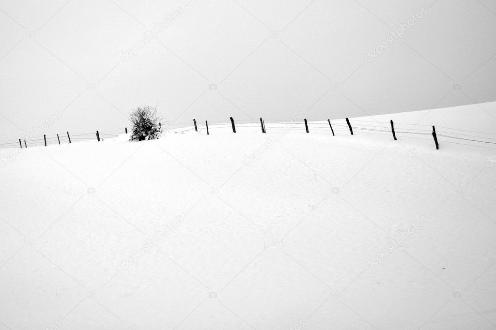 Black and white photo of winter landscape