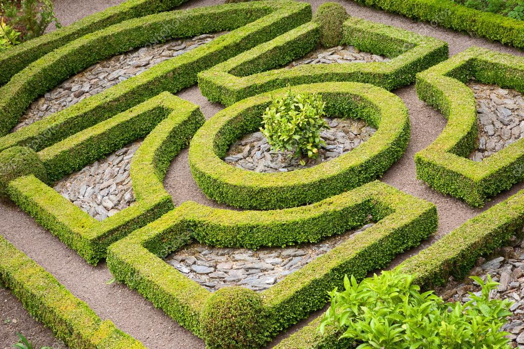 Topiary knot garden — Stock Photo © andrewroland #35378505
