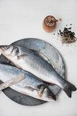 syrové ryby