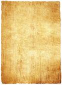 Fotografie Bright papyrus paper texture
