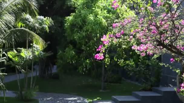 tropischer Sommergarten