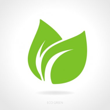 Eco green leaf concept